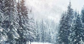 I misteriosi riti del Natale nelle montagne friulane